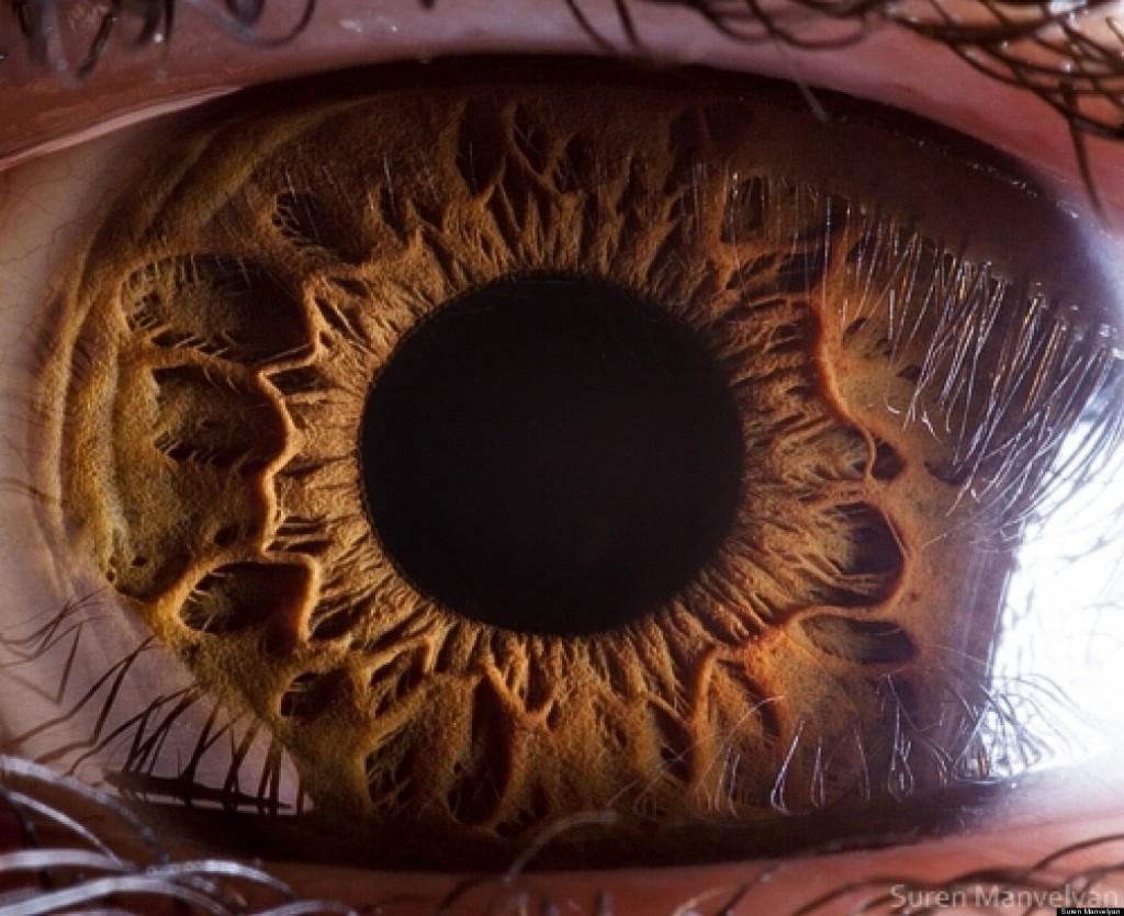 Los megapixeles del ojo humano y otros datos